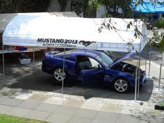 """Activación Mustang, Concepto: """"¿Qué tan cerca estás de lo que quieres ser?""""."""