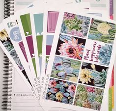 Planner Stickers Succulent Weekly Kit for Erin Condren, Happy Planner, Filofax, Scrapbooking