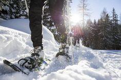 Winter in and Around Kalamazoo, Michigan - Discover Kalamazoo Orlando, Off The Map, Snowshoe, Outdoor Recreation, West Virginia, Winter Wonderland, Skiing, Michigan, Condo