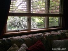 I love the view from this window. When thinking landscape design think of the view from indoors. #gardenchat