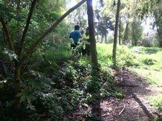 Humedal Torca  Así trabaja Aguas de Bogotá SA ESP. En coordinación con la Secretaría Distrital de Ambiente y la Policía Nacional, se adelanta operativo de identificación y detención a infractores que realizan acopio ilegal de plantas.