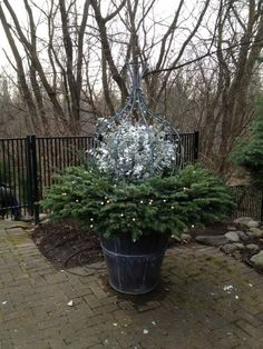 Lovely Outdoor Winter Planters Ideas Make It More Beautiful - There is a wide range of approaches to plant your plants, blooms, trees, and bushes, yet an extremely prevalent path is to plant them in outdoor garde. Christmas Planters, Christmas Diy, Holiday Crafts, Winter Container Gardening, Advent, Winter Planter, Garden Urns, Flower Boxes, Flowers