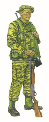 Tracker team LRRP, Company F, Airborne Division, Vietnam, Military Dogs, Military Art, Us Army Uniforms, 101st Airborne Division, Vietnam War, Special Forces, Warfare, Battle, Asia