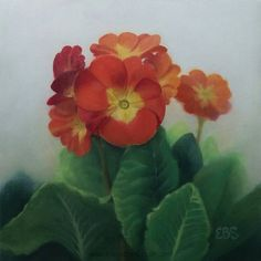 Still Life in Oils, Paintings by Elaine Brady Smith. Still Life in Oils, Daily Paintings Primroses, Still Life Art, Plant Leaves, Textiles, Paintings, Oil, Ceramics, Artists
