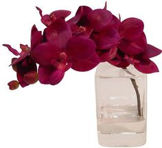 "8"" Phalaenopsis in Cube Vase - Faux - The French Bee"
