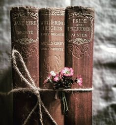 Pretty books bond with flowers. Jane Eyre, Wuthering Heights by Bronte, Pride and Prejudice by Austen Old Books, Antique Books, Vintage Books, Art Antique, This Is A Book, I Love Books, Books To Read, Reading Books, Books Decor