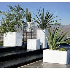 squared off. Brite white planters square up sleek and modern. Protected for indoor and outdoor settings, hi-gloss lacquered galvanized steel plays up refined industrial to dramatic effect. blox galvanized hi-gloss white planters is a exclusive. Cheap Landscaping Ideas, Large Backyard Landscaping, Landscaping Supplies, Landscaping With Rocks, Modern Landscaping, Backyard Ideas, Garden Ideas, Landscaping Equipment, Landscaping Edging