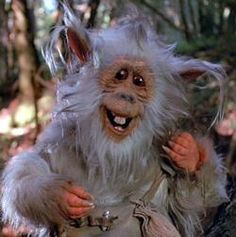 Teek, a native of Endor, and my favorite character of the intergalactic      Empire.  Happy #StarWars Day!