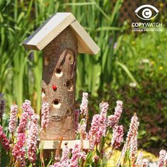 Ladybird Tower - Wildlife and Insect Habitats and Houses - Aviaries, Birdhouses & Tables, Dovecotes, Pet Hutches & Wildlife Houses Insect Box, Bug Insect, Best Bird Feeders, Timber Logs, Apex Roof, Sunflower Hearts, Insect Hotel, Tower Garden, Different Birds