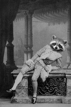Roybert, the raccoon, is back from a hard day of scavenging. By Brady's Bestiary on Etsy