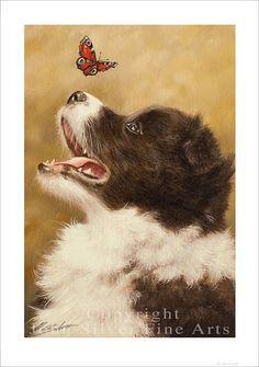 Border Collie cachorro perro retrato por el por JohnSilverFineArts