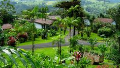 Greentique Costa Rica Resorts & Hotels