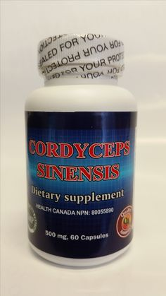 Sagee's Cordyceps Sinesis:  500mg – 60 Capsules Health Canada NPN licence Number: 80055890 Ingredient per capsule:  Pure Cordyceps extract Product Description: Cordyceps is a fungus that lives on certain caterpillars in the high mountain regions of China. Also, cordyceps is used traditionally to treat coughs, chronic bronchitis, respiratory disorders, kidney disorders, nighttime urination, male sexual problems, anemia, irregular heartbeat, high cholesterol, liver disorders and dizziness.