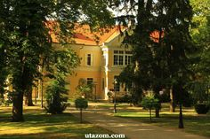 See 3 photos from 18 visitors to Visz. Homeland, Budapest, Mansions, House Styles, Modern, Hungary, Mansion Houses, Trendy Tree, Villas
