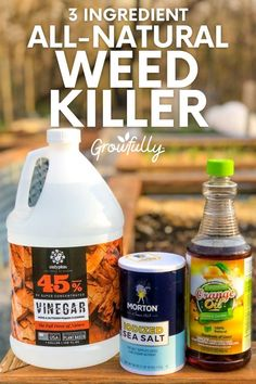 Here is a recipe for an environmentally safe homemade weed killer. There are no harsh fumes, and it can be used on almost any hard surface. Oil Garden, Weed Killer Homemade, Corn Gluten Meal, Plastic Spray Bottle, Weed Seeds, Gardening For Beginners, Amazing Gardens, Organic Gardening