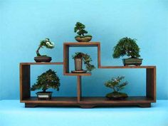 Wooden, multi-tier Bonsai display stand