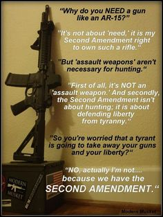 """Its really hard to argue with this logic lol... Its also true that its not an """"assault weapon"""""""