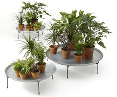 Improving Office Life With Chic Furniture That Integrates Plants | Co.Design | business + design