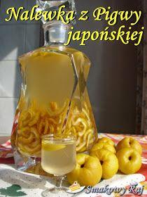 Smakowy Raj - blog kulinarny: Nalewka z pigwy japońskiej Smoothie Drinks, Fruit Smoothies, Homemade Liquor, Winter Treats, Good Food, Yummy Food, Magic Recipe, Irish Cream, Wine Drinks