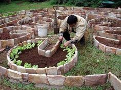 Permaculture beds
