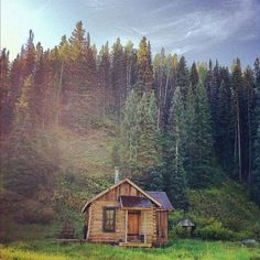 all-i-need-is-a-little-cabin-in-the-woods-20160902-103.jpg 780×780 pixels