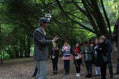 Irish Storytelling Tour from Dublin
