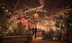 decoração de festa de casamento no campo a noite - Pesquisa Google