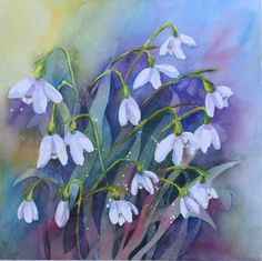 snowdrop Flower Drawing | Snowdrops