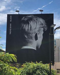 Troye Sivan Songs, Blue Neighbourhood, Connor Franta, Tyler Oakley, Set Me Free, Queen, Pop Music, Cute Wallpapers, Bloom