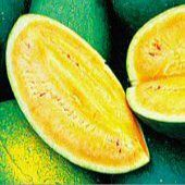 Sweet Siberian Watermelons:  The watermelon's apricot colored flesh is very sweet and juicy.