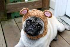 Baby Bear Dog Hat. Hand knitted by Sweethoots, $16