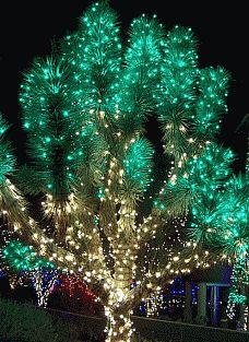 Christmas lights displays to see in Las Vegas
