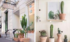 Een kijkje in een stijvolle winkel in Kopenhagen met héél veel planten - Roomed