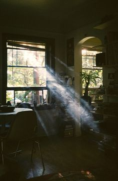 Sad as it is, the smoke from a cigarette makes the most amazing patterns with sunlight and air....