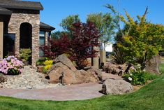 Delightful Japanese Maple decorating ideas for Appealing Landscape Contemporary design ideas with boulder dry river bed entry grass Hydrangea japanese maple tree lawn outdoor