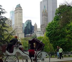 Carriage ride through Central Park