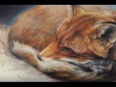 Wildlife paintings by Marjolein Kruijt