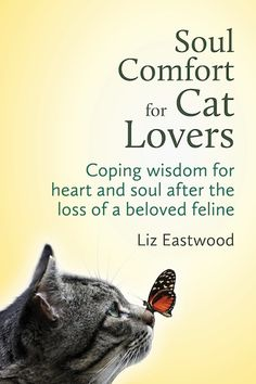 Read Book Soul Comfort for Cat Lovers: Coping wisdom for heart and soul after the loss of a beloved feline Author Liz Eastwood, Crazy Cat Lady, Crazy Cats, Pet Loss Grief, Cat Memorial, Memorial Ideas, Losing A Pet, Losing A Cat Quote, Rainbow Bridge, Animal Quotes