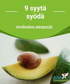 9 syytä syödä avokadon siemeniä   Avokadon kivi #sisältää monia terveydelle #hyödyllisiä ravintoaineita, jotka voi hyödyntää aivan samalla tavalla kuin #hedelmälihankin.  #Terveellisetelämäntavat