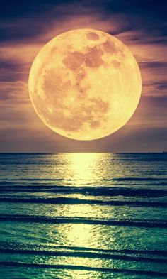 Suoer full moon above sea mobile wallpaper Moon Sea, Moon River, Blue Moon, Beautiful Moon, Beautiful Images, Full Moon Pictures, Shoot The Moon, Good Night Moon, Stars And Moon