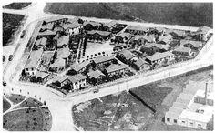 piola-1930