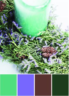 Stillleben Farben - Farbpalette Grün und lila und braun - Tweed & Greet