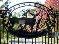Beautiful fall colors and Great Gate!!