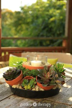 Make a multi pot centerpiece - It's hard to believe that this gorgeous succulent centerpiece was made from humblest of materials. An inexpensive wire hanging basket frame, terracotta pots, reindeer moss, and a Hurricane candle make for a show stopping planter / table decoration that will get people talking!