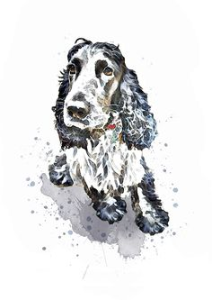 A bespoke custom dog pet portrait created by You and Me Prints from your everyday snaps. A unique personalised artwork for the home or gift for a special loved one or dog lover. #cockerspaniel #petportrait