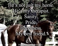 It's not just my horse