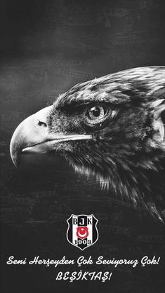 Besiktas Wallpaper Black Eagle – Tattoo World Black Eagle Tattoo, Latest Tattoos, Happy Animals, Tattoo Trends, Tattoo Models, Bald Eagle, Tatoos, Wallpapers, Football