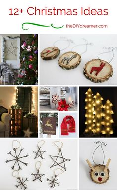 12+ Christmas Ideas.