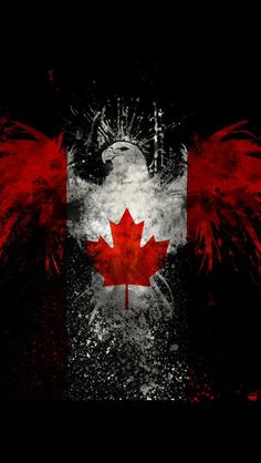 Cool eagle with Canadian flag Wallpaper Canada, Eagle Wallpaper, Plant Wallpaper, Wallpaper Backgrounds, Iphone Wallpaper, Canadian Wildlife, Canadian Art, Canadian Flags, Canadian Flag Tattoo