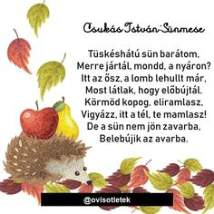 Lombok, Strawberry, Hedgehogs, Fruit, Ideas, Hedgehog, Strawberry Fruit, Thoughts, Strawberries